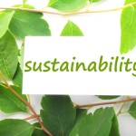 The Art of Expanding Your Business Sustainably