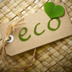 5 Successful Eco-Friendly Businesses to Emulate