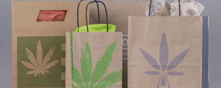 Recycled Paper Shopping Bags (Craft)
