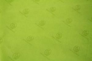 custom tissue paper PRIMAVERA LIME TISSUE